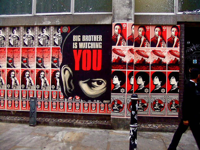 Big Brother is watching you (flickr timrich26)